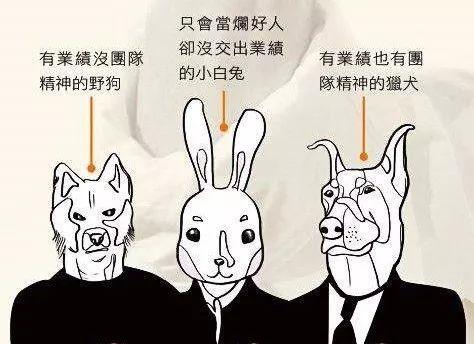 衢州人才网分享小白兔员工的由来